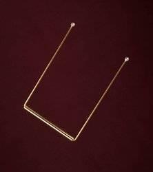 Diagnose Wünschelrute mit Silber Spitze